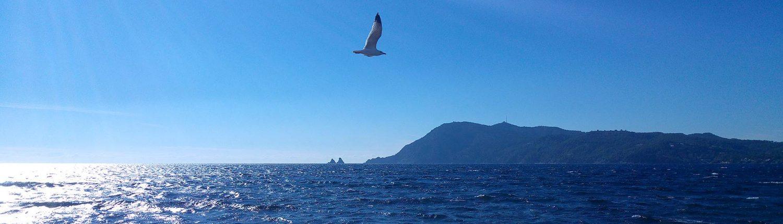 ACTIV-BIO La Seyne sur Mer Contact